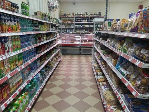 Магазин продукты Окупаемость 7 месяцев - Фото 2