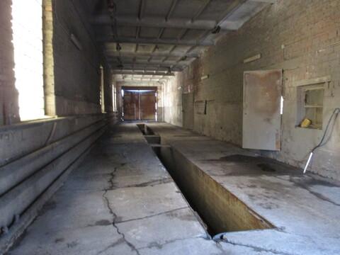 Помещения под офис, производство, ремонт, склад в г. Тосно - Фото 4