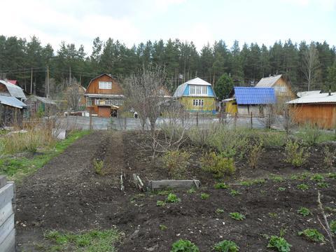 Сад на Чусовском тракте - Фото 2