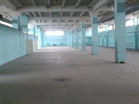 Сдам складское помещение 1850 кв.м, м. Ломоносовская - Фото 2