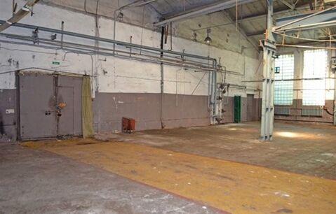 Сдам производственное помещение 905 кв.м, м. Балтийская - Фото 2