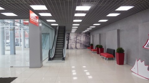 Сдам в аренду коммерческую недвижимость в Горроще - Фото 5