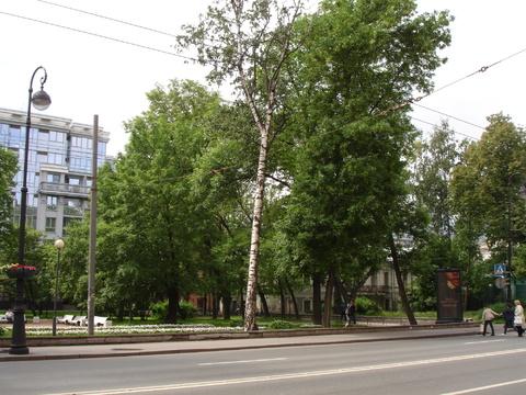 200 кв м у метро Петроградская - Фото 1