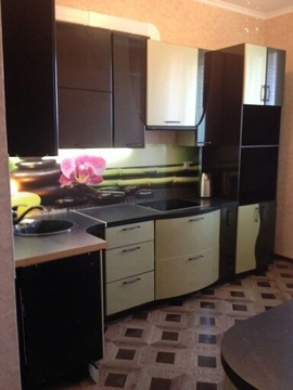 Продам однокомнатную квартиру 48,5 кв.м в д. Медвежьи Озера - Фото 2