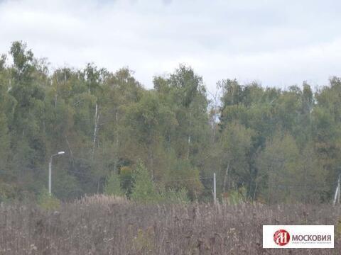 Лесной участок 42 сотки, на берегу реки. 30 км от МКАД, прописка. - Фото 3