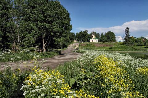 Старый Петергоф + 8 км , Петровское - Фото 2