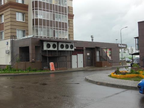 Сдается торговое помещение 288м2 ул. Курыжова 25 Ар. ставка-1500р/м/м2 - Фото 1