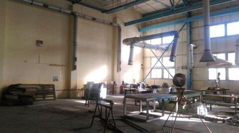 Сдам производственное помещение 1000 кв.м, м. Электросила - Фото 1