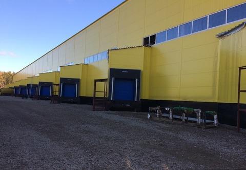 Аренда склада, Ногинский район, 15 км от МКАД - Фото 1