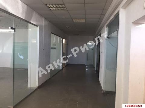 Аренда торгового помещения, Краснодар, Ул. Московская - Фото 4