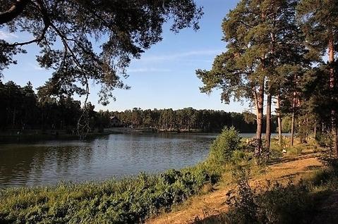 140 соток первая линия озера Сенеж - Фото 2