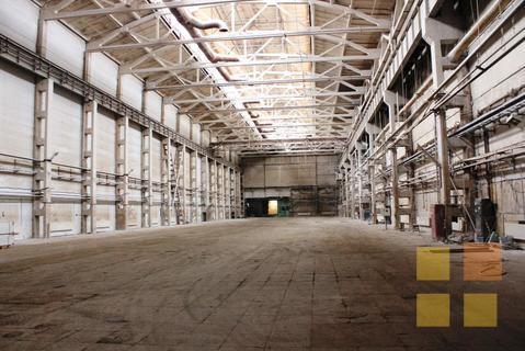Готовое производство в Сосновом Бору на участке 2,7 га + ж/д ветка - Фото 2