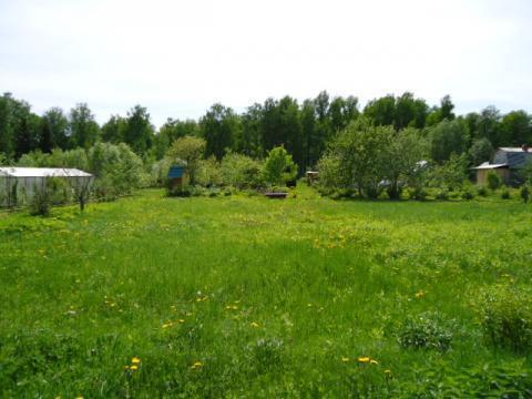 Дача на земельном участке 9 соток - Фото 1