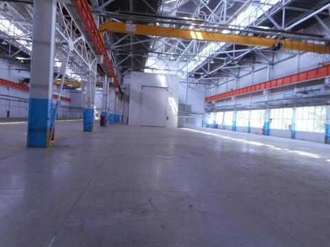 Сдам производственно-складские площади 8 000 кв.м. - Фото 1