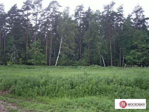 Продажа земельного участка в Чеховском районе - Фото 5