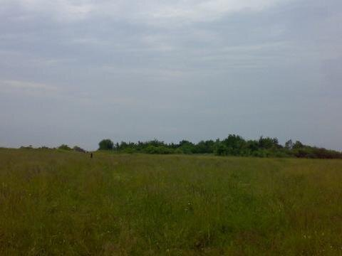 Продается участок 9 га в Калининградской области. - Фото 4
