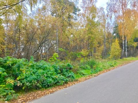 Участок 10 соток п. Родники 14 км от МКАД - Фото 1