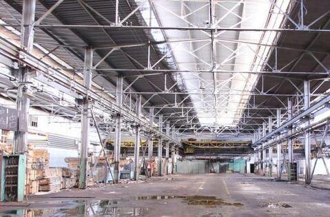Сдам производственный комплекс 107 225 кв.м. - Фото 1