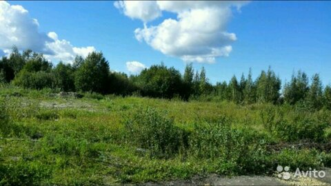 Продам участок 15,57 сот дер Виллози Ломоносовского р-на в 3 км от КАД - Фото 2
