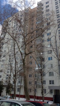 Новоясеневская - Фото 1