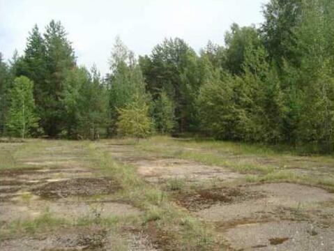 Продается земля 3824 соток, деревня Галкино - Фото 5