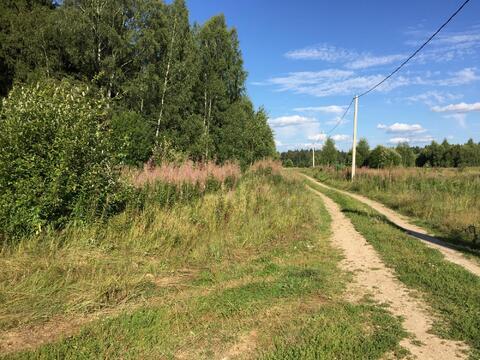 Участок 15 соток, д. Новинки 47 км. от МКАД по Дмитровскому шоссе. - Фото 3