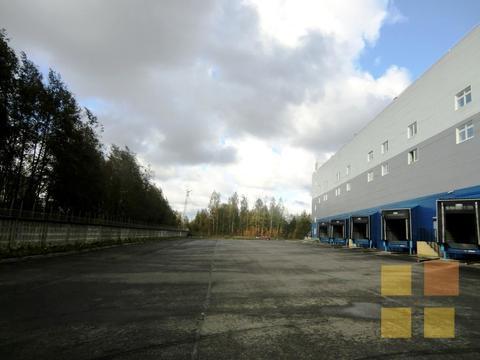 Склад класса А на Шафировском, 2700 кв.м, офисы - Фото 5