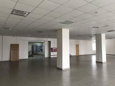 Сдам торговое помещение 346 кв.м, Пермь - Фото 3