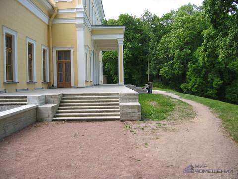 Участок у парка Сергиевка. Все коммуникации. Ломоносов - Фото 1
