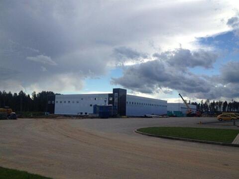 Сдам складское помещение 3200 кв.м, м. Комендантский проспект - Фото 5