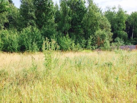 Участок крайний к лесу. д. Лукошкино территория Новой Москвы. - Фото 3