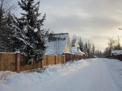 Участок с лесными деревьями, огорожен, Минское шоссе, Зеленая роща - Фото 1