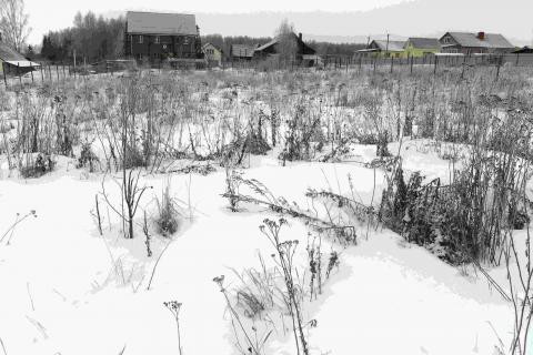 Купить ровные земельные участки по 3 га в Гатчинском районе у озера - Фото 2