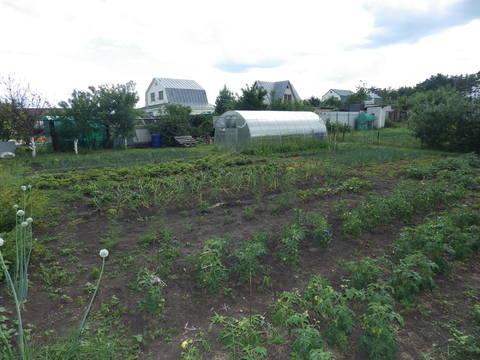 Продается земельный участок в селе Ярлуково - Фото 2