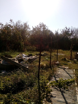 Продам дачу на садовадческом товариществе - Фото 1
