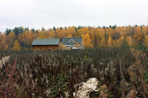 Прилесной участок в СНТ, окруженном с четырех сторон грибным лесом - Фото 5