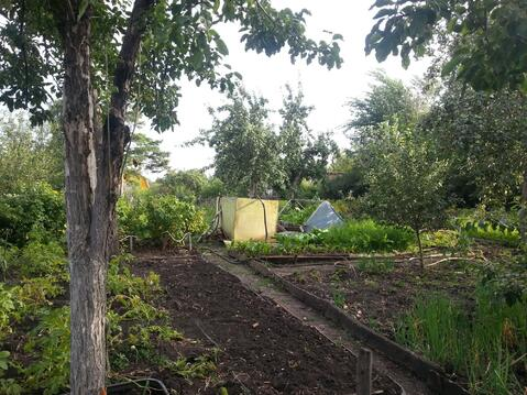 Сад девять соток в Копейске, Пластмасс-1 - Фото 1