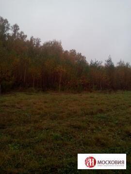 Участок 12,63 с прекрасным видом на лес,21км от МКАД, Калужское\Киевск - Фото 3