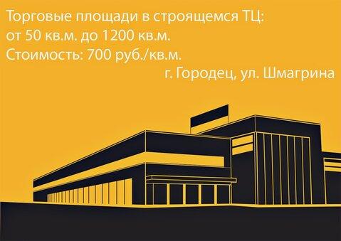 Площади в ТЦ в г.Городец, ул. Шмагрина от 50 до 1200 кв.м. - Фото 2