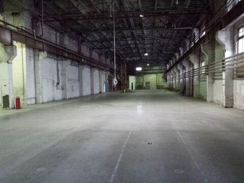 Сдам складское помещение 2470 кв.м, м. Электросила - Фото 3