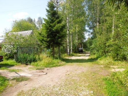 купить дачу садовый участок новосибирск в боровом вариант для покупки