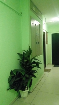 Продам 2-Х компактную квартиру - Фото 5