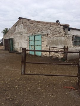 Продается ферма в Белгородской области - Фото 4