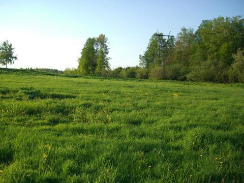 Продается большой участок в деревне Рождествено, Рузский р. - Фото 2