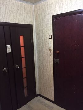 1 комнатная квартира в пос. Калининец, 252 - Фото 4