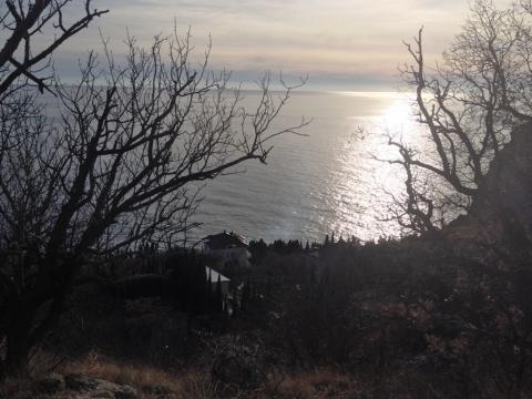 Участок с шикарной панорамой, среди сосен, ели и можжевела - Фото 4