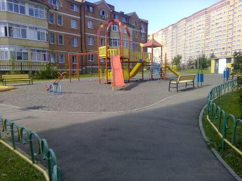 http://cnd.afy.ru/files/pbb/max/2/29/299ed1e2660f1b3a500946032139239801.jpeg