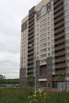 Объявление №43268248: Продаю 2 комн. квартиру. Санкт-Петербург, Дальневосточный пр-кт., 6, к 1,