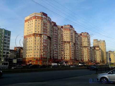 Продажа псн, м. Старая Деревня, Ул. Савушкина - Фото 2