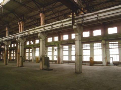 Отпаливаемый склад - 1553,1 м2, Шоссе Энтузиастов - Фото 1